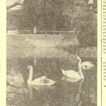 04 - Gazeta Robot. 30.V.1963