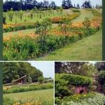 2 Gartenpraxis 6-2012 (3)
