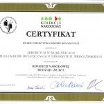 Buxus_certyfikat