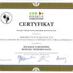 Hemerocallis_certyfikat
