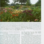 Landscaping with Daylilies (1)
