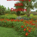 Landscaping with Daylilies tytuł (1)