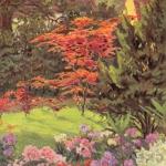 Wojsławickie klony palmowe -  Gartenschönheit nr 18, 1923 r.