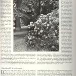 art. Oheimb, RHODODENDRON, cz.III -1924 r
