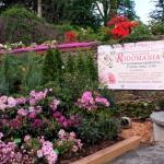 RODOmania 2012 - ogród pokazowy - Wojslawice, maj 2012, HGN (1)