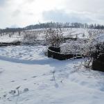 Zima w Wojsławicach, HGN, 15.III.2010