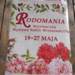 RODOMANIA 2012 - plakat