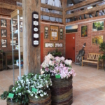 Wystawa RODOMANIA 2012 - przegląd botanicznych rodzajów roślin wrzosowatych uprawianych w Polsce.