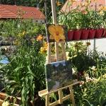 Kiermasz roślin w trakcie HEMEROmania 2015 - 11-12 lipca 2015_HGN (4)