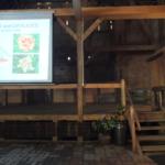 IX spotkanie liliowcowych entuzjastów 12–13 lipca 2014 - fot. Hanna Grzeszczak-Nowak