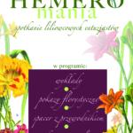 hemero2