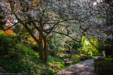 Wyniki konkursu International Garden Photographer of the Year