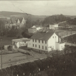 Droga z Niemczy do Wojsławic.1903 r.