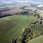 Widok sadu z lotu ptaka w 2012 r. -