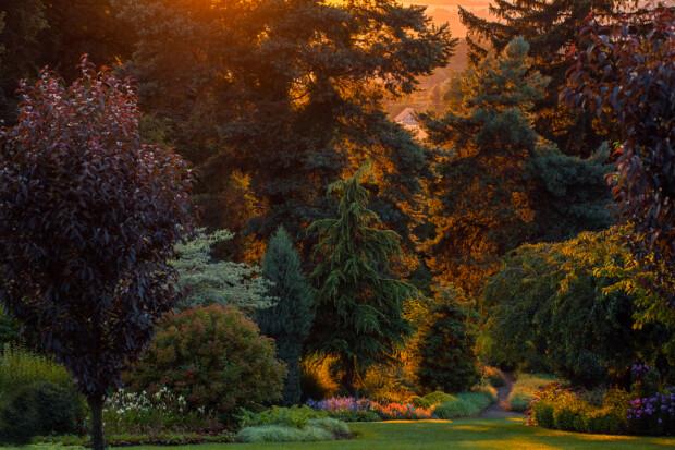 Wyniki konkursu International Garden Photographer of the Year 2021